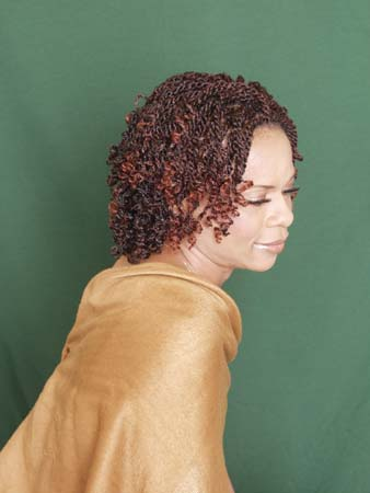 african american braids natural hair style salon book